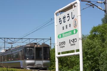 IMG_3250-j.JPG