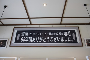 IMG_7156.JPG